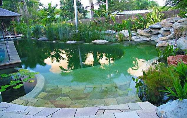 Natural Pool Construction Company T 1